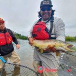Pesca con mosca – Día completo - Pucón